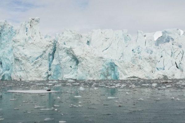 Svalbard, Van Post Breen | Research Group Bartsch | APRI