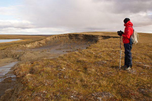 Yamal, Erosion | Research Group Bartsch | APRI