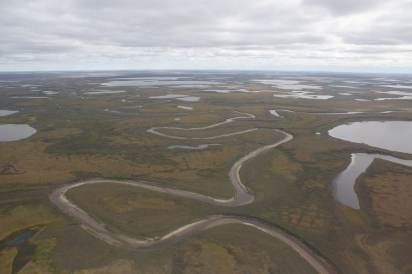 Yamal, Lakes | Research Group Bartsch | APRI