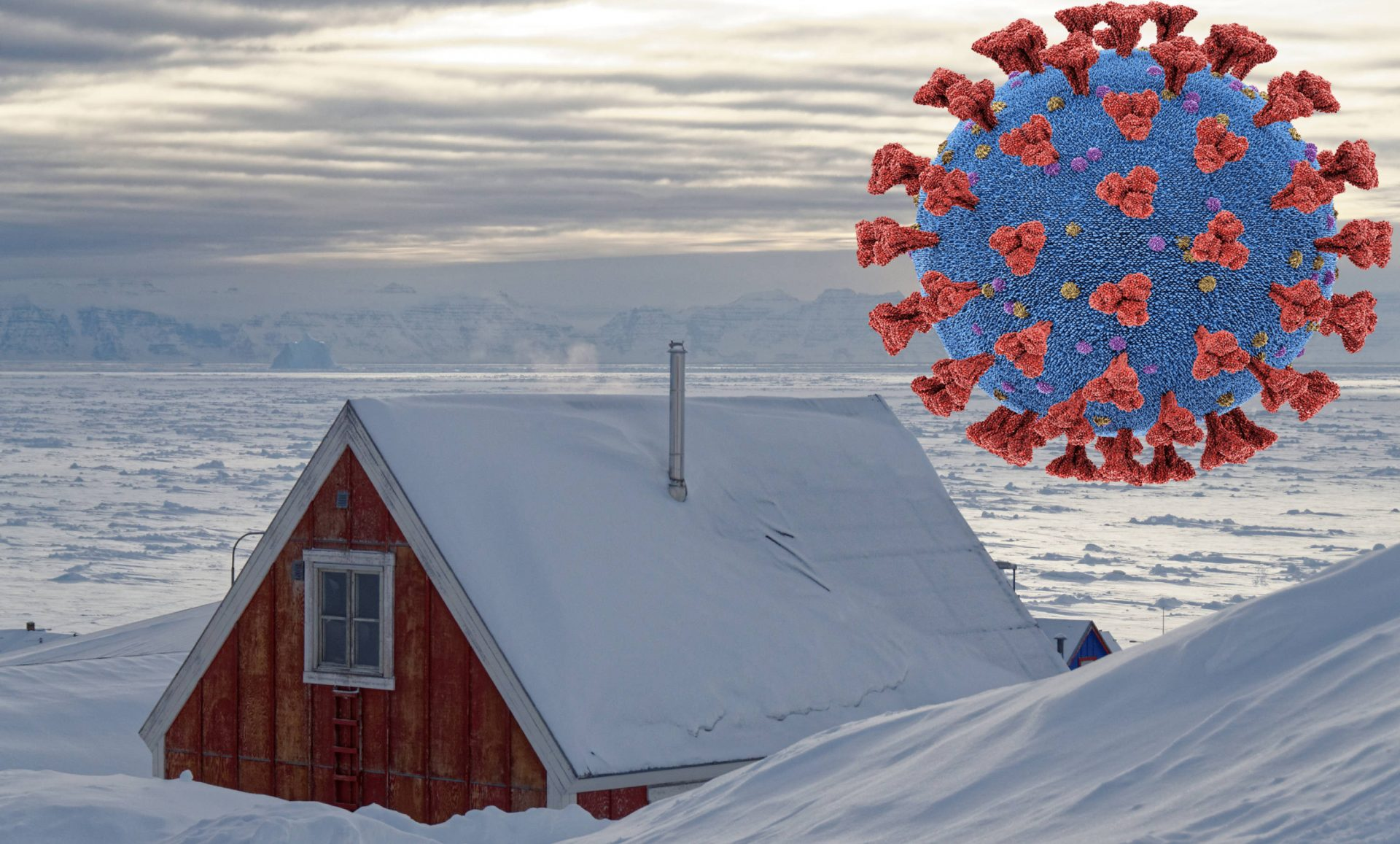 On hold – Polar research during a global health-crisis